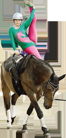 horse gymnast