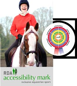 accessibility mark