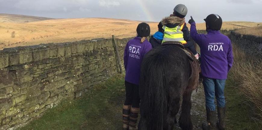 horses rainbow