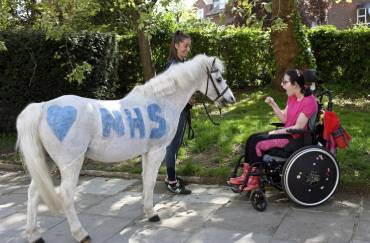 A horse sitting in front of a girl on wheelchair
